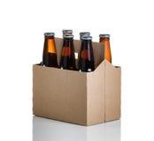 Sex packe av exponeringsglas buteljerade öl i generisk brun pappcarrie Arkivbild