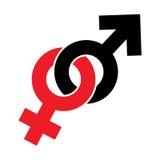 Sex symbol masculino y femenino aislado en el fondo blanco, Fotos de archivo libres de regalías