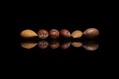 Sex unshelled muttrar, två mandlar, en pecannöt och tre hasselnötter I arkivbild