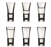 Sex vodkaexponeringsglas Arkivfoto