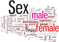 Sex word cloud Stock Photo