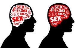 Sexe sur le cerveau Images stock