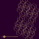 Sexhörnig geometrisk bakgrund Genetiska sexhörningar och socialt nätverk Framtida geometrisk mall 3d business dimensional present Royaltyfri Foto
