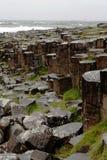 Sexhörnigt vaggar på jättevägbanken som är nordlig - Irland royaltyfri foto