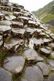 Sexhörnigt vaggar på jättevägbanken som är nordlig - Irland Royaltyfri Fotografi