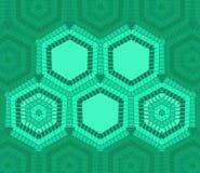 Sexhörningstextmall av grön färg Arkivfoto