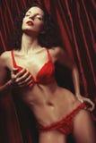 Sexig brunettkvinna som poserar i damunderkläder Arkivfoton