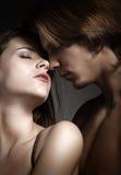 Sexig förälskelse kopplar ihop Fotografering för Bildbyråer