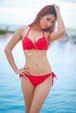 Sexig flicka i bikini Fotografering för Bildbyråer