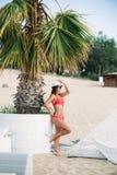 Sexig flicka i en rosa baddräkt på stranden Sommar soligt väder Royaltyfria Foton