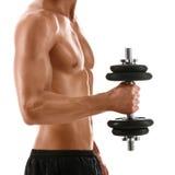 Sexig huvuddel av den muskulösa mannen med vikt arkivfoto