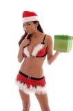 sexig julälva Fotografering för Bildbyråer