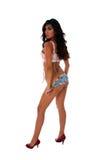 sexig kvinna för brunett Royaltyfri Fotografi