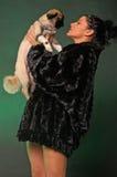 sexig kvinna för hund Royaltyfri Foto