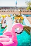 Sexig kvinna i bikini som tycker om solen och att garva för sommar Arkivbild