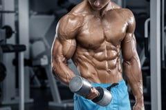 Sexig muskulös man som utarbetar i idrottshallen som gör övningar, stark manlig naken torsoabs royaltyfri foto