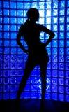 sexig silhouette arkivbild