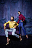 Sexig stil för mode för parti för affär för kvinnafracksamling Royaltyfri Bild