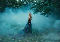 Sexig svart drottning Fotografering för Bildbyråer