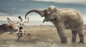 Sexig trendig lady med elefanten Arkivbild