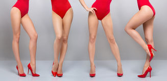 Sexiga ben av unga kvinnor i röd erotisk juldamunderkläder Fotografering för Bildbyråer