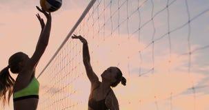 Sexiga flickavolleybollspelare passerar bollen nära det netto och slår bollen på solnedgången i ultrarapid arkivfilmer