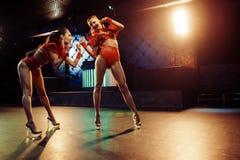 Sexiga flickor i klubba Royaltyfri Fotografi