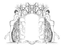 sexiga kantflickor vektor illustrationer