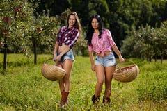 Sexiga kvinnor som bär korgar av äpplen Royaltyfria Foton