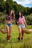 Sexiga kvinnor som bär korgar av äpplen Royaltyfria Bilder