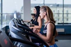 Sexiga passformkvinnor som kör på trampkvarnar i modern idrottshall Sunda unga unga flickor som gör rinnande övning på trampkvarn Royaltyfri Bild