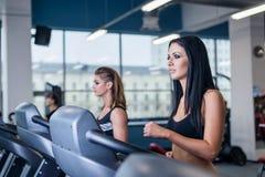 Sexiga passformkvinnor som kör på trampkvarnar i modern idrottshall Sunda unga unga flickor som gör rinnande övning på trampkvarn Arkivbilder