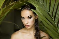 Sexigt härligt kvinnanederlag bak palmbladen Härlig st royaltyfri fotografi