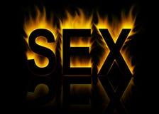 Sexo Imagem de Stock