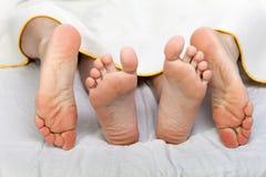 Sexo humano de la cama Imágenes de archivo libres de regalías