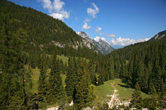 Sexten, Dolomite - Italy Stock Photography