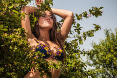 Sexual beauty dressed bikini poses in an summer garden. Royalty Free Stock Images