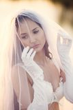 Sexual bride Royalty Free Stock Images