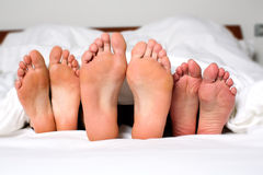 Sexual fantasies. Humorous image of the bare feet of a men and two women in bed sticking out from under the bedclothes conceptual of a threesome, orgy, swingers Stock Photography