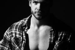 Sexual muscular man Stock Photos