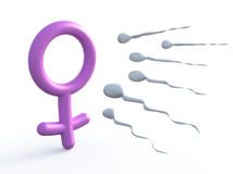 Sexual symbol woman and sperms Royalty Free Stock Photo