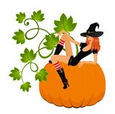 Sexual witch sits on a pumpkin Stock Images