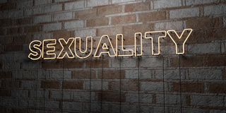 SEXUALITY - Glowing Neon Sign on stonework wall - 3D rendered royalty free stock illustration Royalty Free Stock Photo