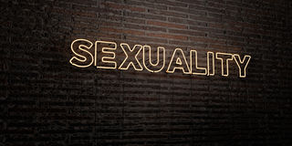 SEXUALITY -Realistic Neon Sign on Brick Wall background - 3D rendered royalty free stock image. Can be used for online banner ads and direct mailers Royalty Free Stock Photography