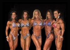 'sexy', ajuste, figura quinteto Foto de Stock Royalty Free