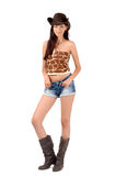 Sexy american cowgirl. Stock Image