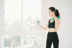 Sexy Asian girl exercising with dumbbells at fitness gym with copy space, sport and healthy lifestyle concept Stock Image