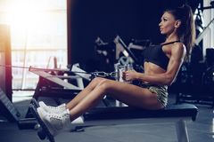Sexy athletic young girl training back in gym Stock Photo