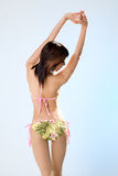 Back. Isolated back of a woman in bikini royalty free stock photo
