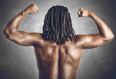 Sexy back. Man shows your sexy back and muscular Stock Images